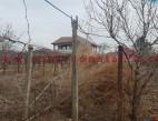 Vanzare teren Intravilan Constanta Km 5 pret 55000  EUR