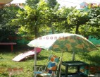 Vanzare Casa la sol Constanta Gara pret 100000  EUR