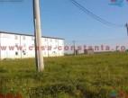 Vanzare teren Intravilan Costinesti  pret 25000  EUR