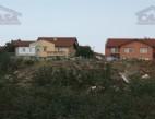 Vanzare teren Intravilan Constanta Boreal pret 85  EUR