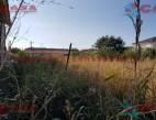 Vanzare teren Intravilan Constanta Palazu Mare pret 45000  EUR