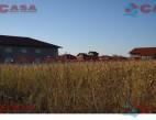Vanzare teren Intravilan Constanta Km 5 pret 35  EUR