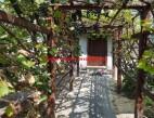 Vanzare Casa la sol Valu lui Traian  pret 56000  EUR