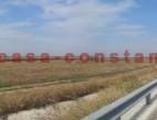 Vanzare teren Intravilan Constanta  pret 40000  EUR