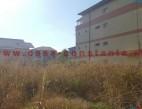 Vanzare teren Intravilan Constanta Energia Kamsas pret 125000  EUR