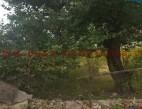 Vanzare teren Intravilan Constanta Km 5 pret 100  EUR